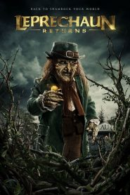 Leprechaun Regresa
